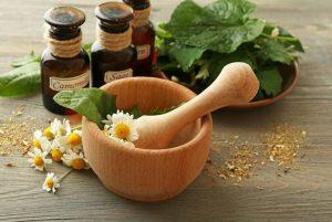 Hierbas medicinales para protegerse contra los resfriados en invierno